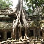 Angkor Wat Cambodia29