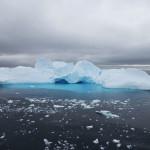 Antarctica by Meryl (28)
