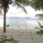 Fiji by Allison (2)