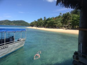 Fiji by Allison (3)