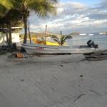 Fiji by Allison (7)