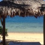Fiji by Allison (8)