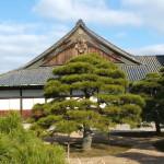 Japan 1 125