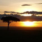 Kenya & Zanzibar by Meryl (47)
