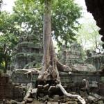 Angkor Wat Cambodia24
