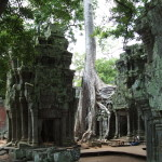 Angkor Wat Cambodia26
