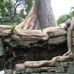Angkor Wat Cambodia27