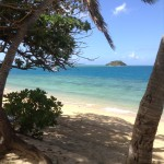 Fiji by Allison (20)