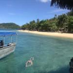 Fabulous Fiji by Allison