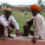 India by Meryl (13)
