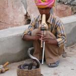 India by Meryl (9)