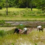 VIETNAM & CAMBODIA BY MERYL (3)