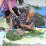 VIETNAM & CAMBODIA BY MERYL (30)
